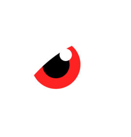 Wizard Cyber Security CYBERSHIELD Logo- Red White Eye Consultancy PCI